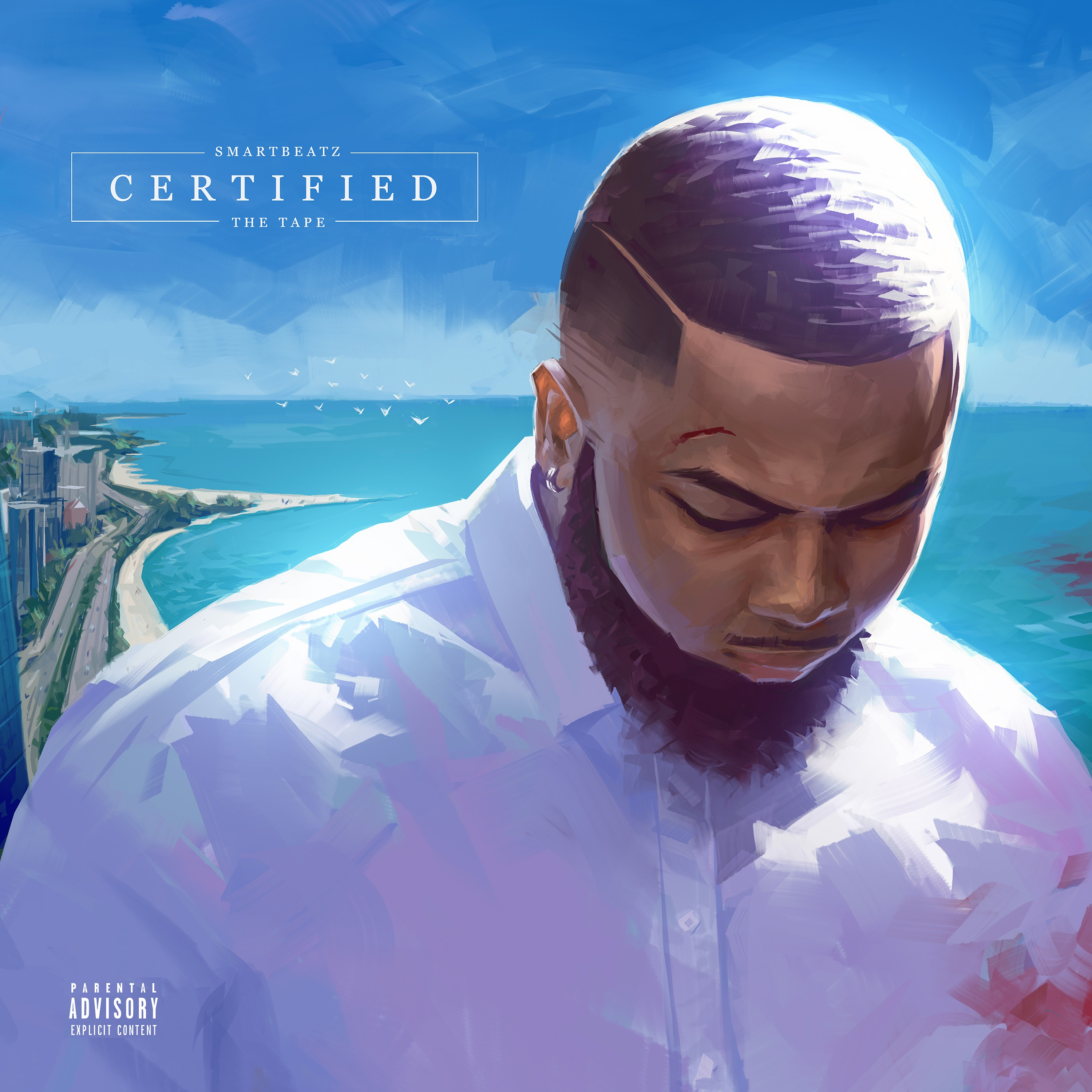 Smartbeatz Certified Artwork